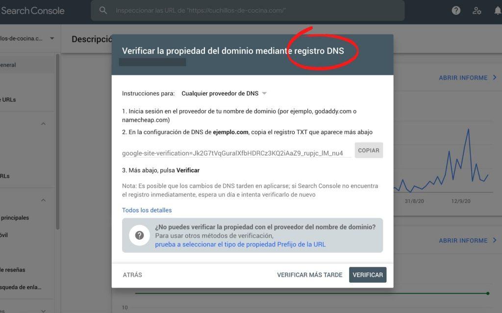 verificación dns search console